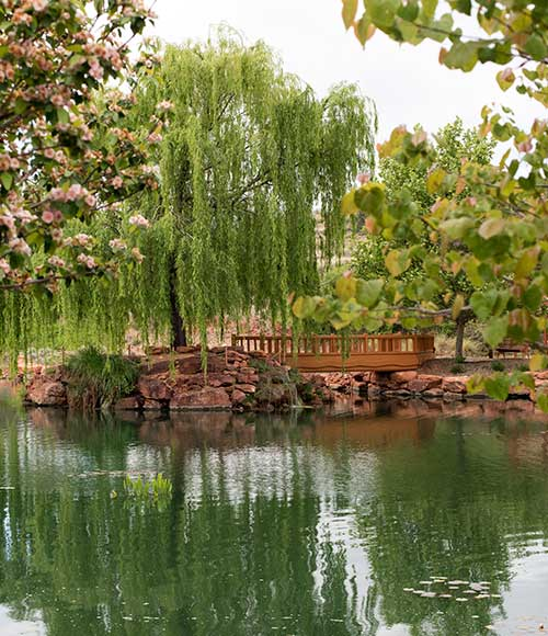 The healing garden at the Tao Mago retreat in Sedona