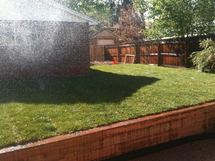 Backyard after updates at Flip 1