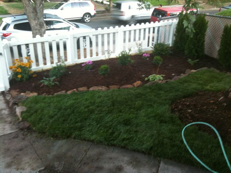 New flower beds