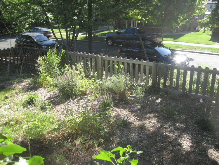 The weathered picket fence and flower beds at our first home